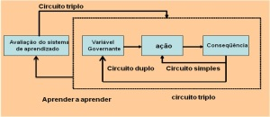 sistematizacao1
